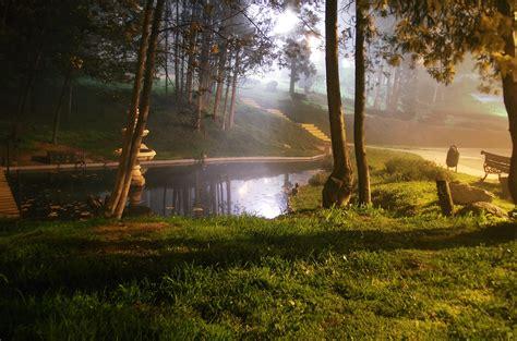 mystic garden by freakevolution on deviantart