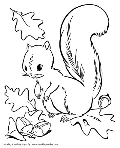 Coloring Pages For Fall Season fall coloring pages squirrel collecting acorns coloring