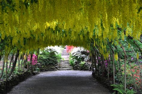 pictures of a garden great british gardens bodnant garden 4 generations of