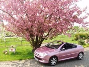 Peugeot 206 Pink Pink Peugeot 206cc Convertible I My Pretty