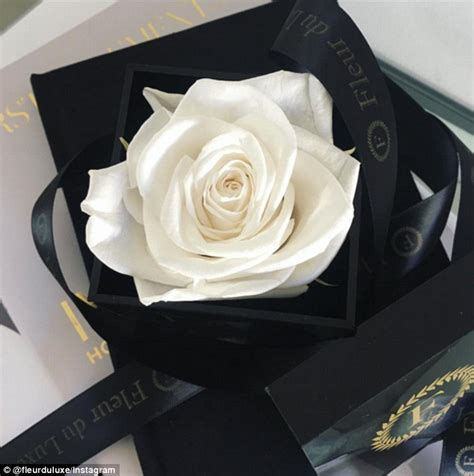 Box A Single Preserved Flower Represent And Lo T2909 1 roses that last a year after being soaked in special oils onlinenigeria