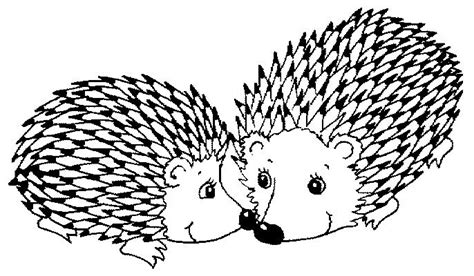 porcupine coloring pages clipartsco sketch coloring page