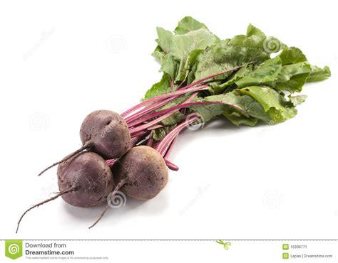 beet root vegetable beet purple vegetable stock image image 15938771