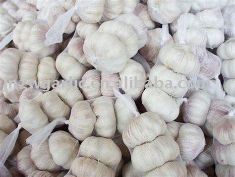 Garlic Powder 100 Grade A 500 Bawang Putih Bubuk Asli White Pepper Powder Serbuk Lada Putih Products Malaysia