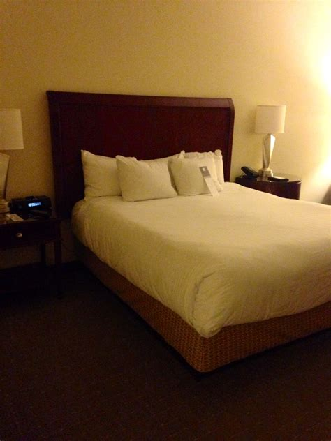 hyatt bedding hotel reviews a hyatt regency orlando international