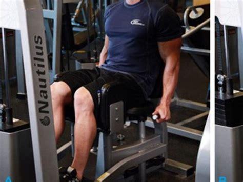 muscoli sedere interno coscia ed esterno coscia i muscoli protagonisti