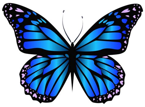 Butterfly Tattoo Clipart | blue butterfly png clipar image butterfly project