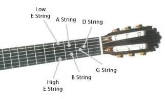 gallery acoustic guitar string names
