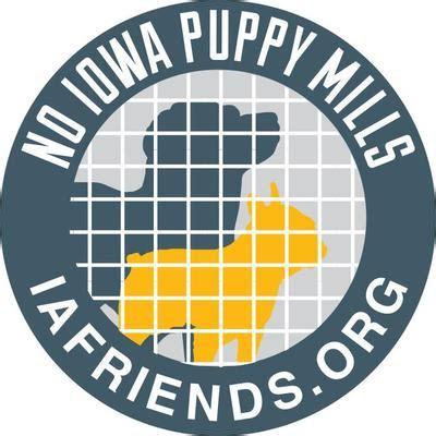 puppy mills in iowa no iowa puppy mills iafriends