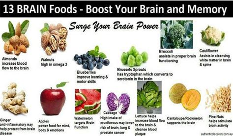 diet for the mind the science on what to eat to prevent alzheimer s and cognitive decline books power brain foods thrive global