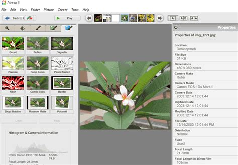 picasa photo editor for android picasa photo editor free for windows