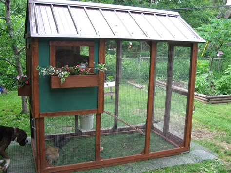 backyard quail coop raccoon proof coop post pics plz backyard chickens