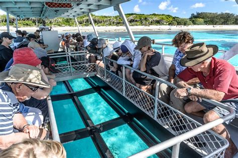 glass bottom boat tours australia glass bottom boat great barrier reef lady musgrave