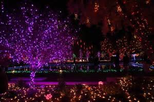 j dub and lady d beautiful christmas lights