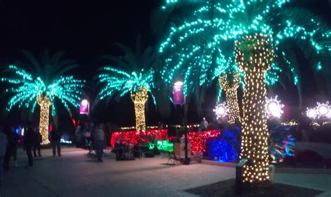 chritstmas lights florida gulf coast