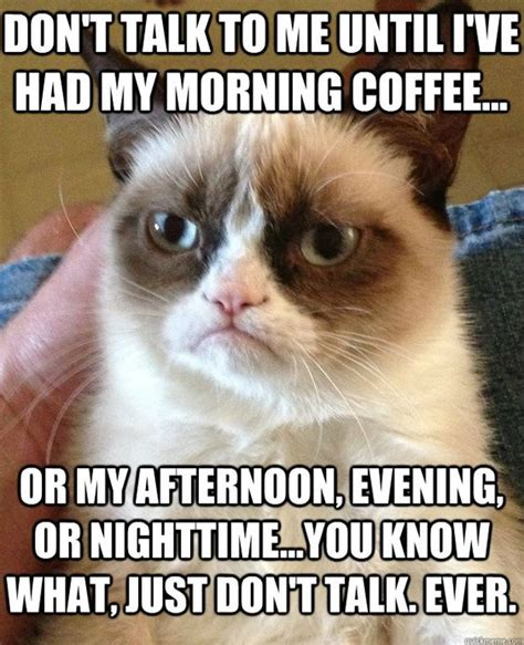 45 Funny Coffee Memes That Will Have You Laughing   Home Grounds