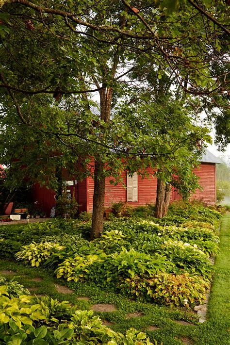 virtual backyard design 100 virtual backyard design landscape design