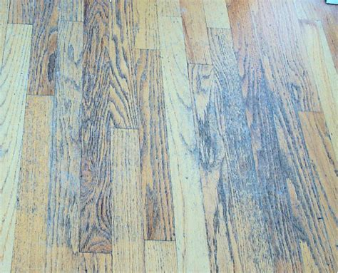 Vinegar Water For Wood Floors by Bad Advice About Wood Floors No Vinegar Cleaning