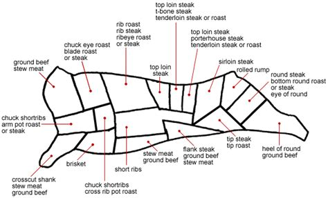 beef sections chart know your beef cut kimchimari
