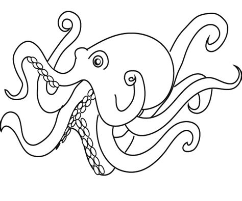pencil of octopus coloring pages