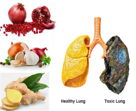 Best Foods To Detox Lungs by 8 Foods That Help Cleanse Your Lungs And Improved Breathing