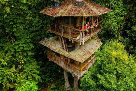 costa rica tree house finca bellavista cartago province costa rica finca bellavista