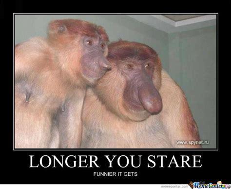 Monkey Face Meme - dick nosed monkey by ben meme center
