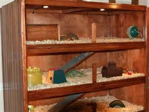 Tv Hutch Cabinet Make Your Own Guinea Pig Cage Abyssinian Guinea Pig Tips