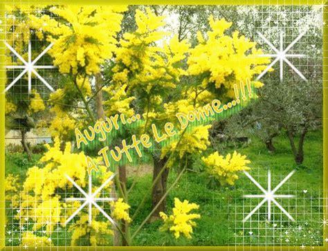 meteo s giov in fiore festa della donna pro loco di mirabello monferrato