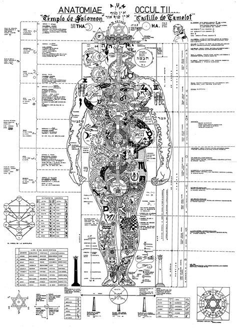 el espejo de salomon el hombre el microcosmos del universo im 225 genes de la anatom 237 a oculta