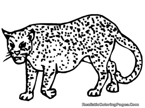 coloring page cheetah coloring pages of cheetahs