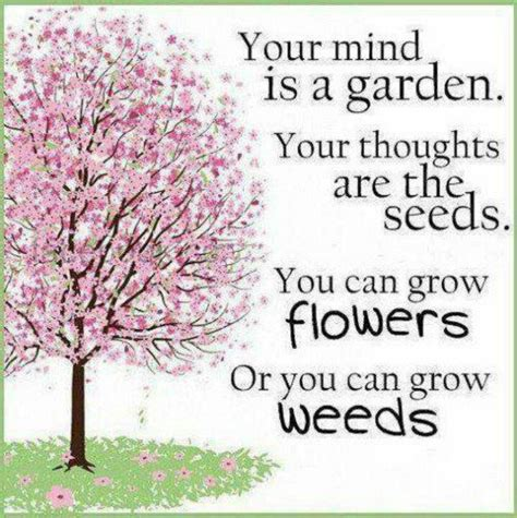 Your Mind Is A Garden Your Thoughts Are The Seeds You Flower Garden Quotes