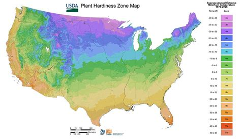 usda zone map 28 plant hardiness zone map garden understanding world hardiness zones plant hardiness