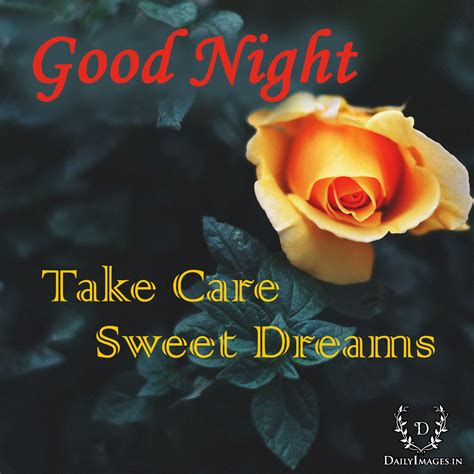 good night  care sweet dreams daily images