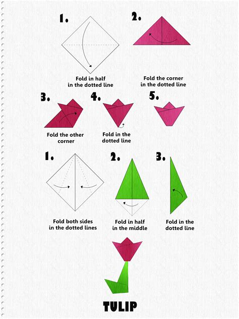 How To Fold Paper Flowers Step By Step - how to make an origami tulip step by step tutorial