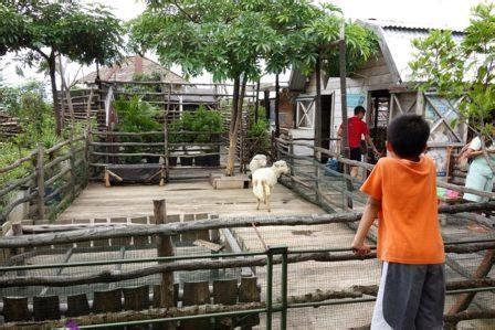 Freezer Mini Di Bandung 34 tempat wisata anak di bandung yang paling menyenangkan