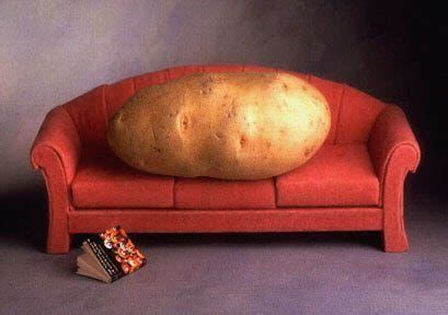 couch potato to five k 5 workouts to motivate even the most accomplished couch