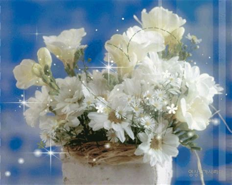 animated white flowers pictures   images