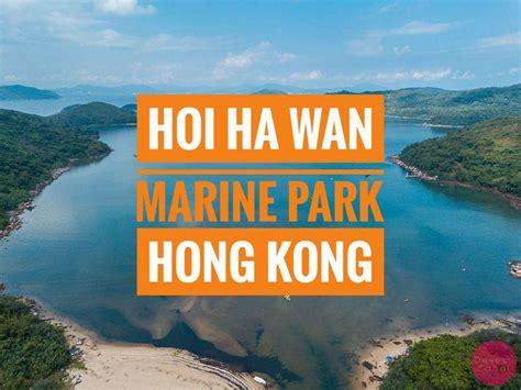 offbeat  touristy     hong kong drone
