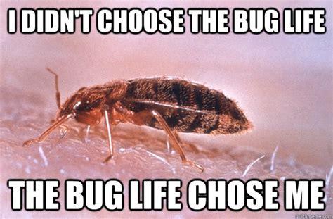 Exterminator Meme - memes pest control memes