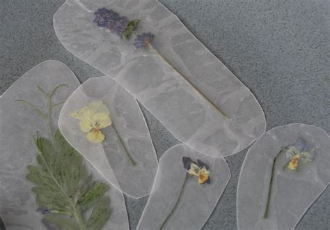 How To Make Wax Paper Leaves - green wax paper pressed flowers