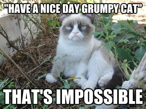 Nice Day Meme - quot have a nice day grumpy cat quot that s impossible misc