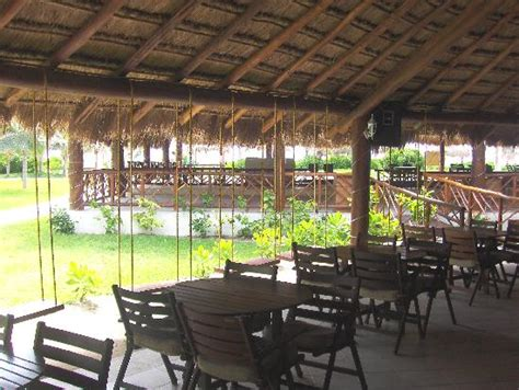 swing bar playa del carmen swing bar picture of el dorado royale by karisma