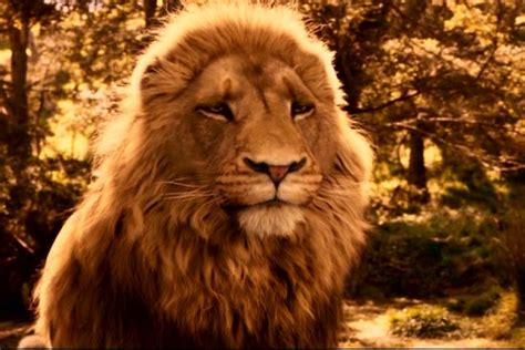 free analytical essay the mythology in lewis narnia
