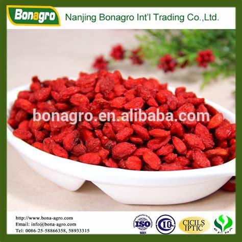 Goji Berry Kering 100 Gr 100 ningxia goji berry from china jiangsu 100 ningxia goji berry manufactory nanjing bonagro