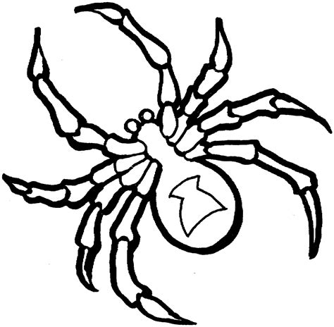 Coloring Pages Spiders printable spider coloring pages coloring me