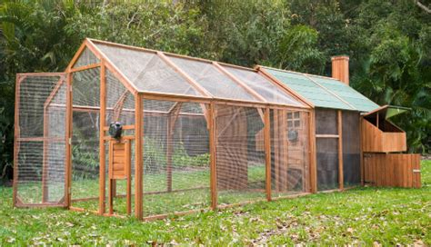 Backyard Chicken Coops Australia Mansion Coop Run Chicken Houses