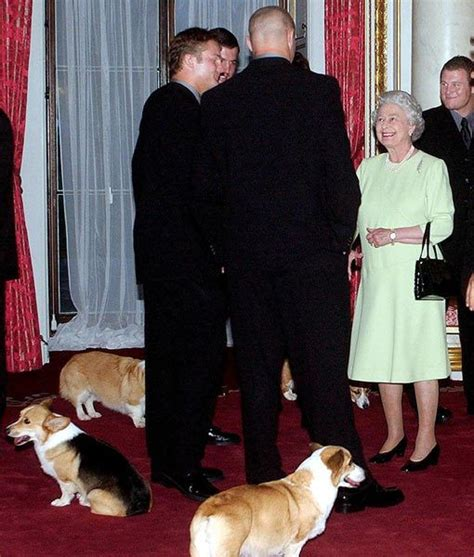corgis queen elizabeth 158 best welsh corgi pembroke images on pinterest the