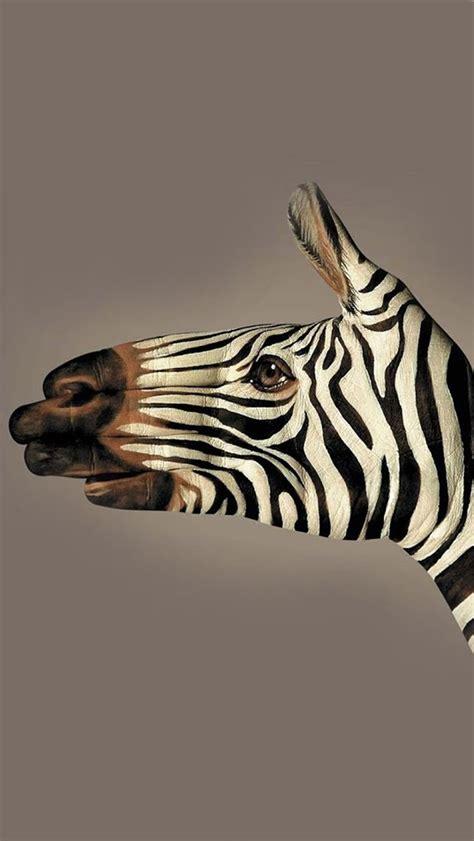 zebra wallpaper for iphone 5 zebra iphone wallpapers on wallpaperget com