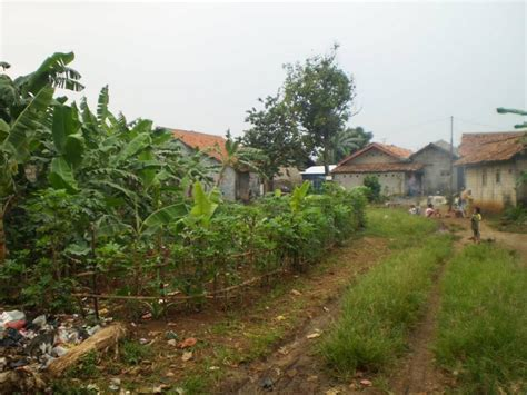 Jual Sprei Murah Di Cibinong Tanah Dijual Di Jual Murah Tanah Di Cibinong Bogor